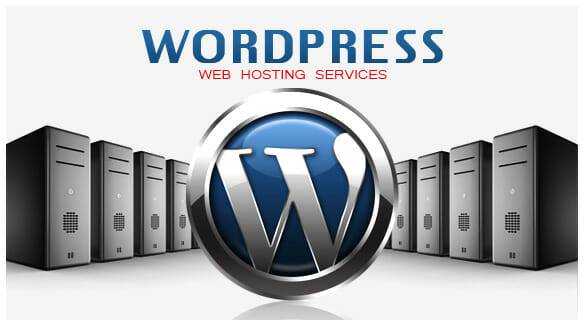Importance Of WordPress Hosting